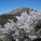 """樹氷と韓国岳 • <a style=""""font-size:0.8em;"""" href=""""http://www.flickr.com/photos/8371571@N05/3356689702/"""" target=""""_blank"""">View on Flickr</a>"""